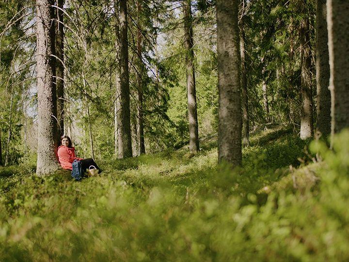 Suomen Sokeri toteutti keväällä Dagmar Driven toimesta myynnin mallinnuksen, jonka avulla saatiin selville jokaisen markkinointitoimenpiteen vaikutus myyntiin tuotteittain.